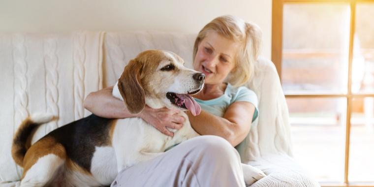 Therapy Dogs for Victims of Sexual Abuse